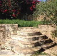 Staircase inside the farm